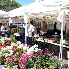 Shop Scotch Plains farmers market